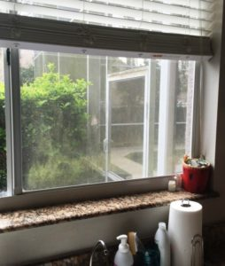 Dirty Window in need of cleaning by A Pane-less Solution Window Cleaning in Boca Raton, FL